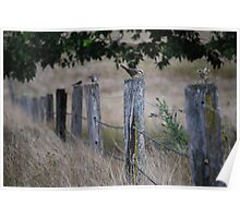 Fence sitters Poster