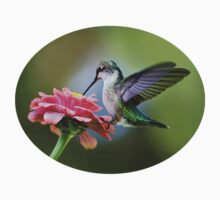 Tranquil Joy Hummingbird Art Baby Tee