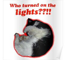 Who turned on the lights? Poster