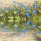 Morning Glory Glow Reflections by Elaine Teague