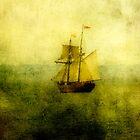 Siren's Song by Cathy  Walker