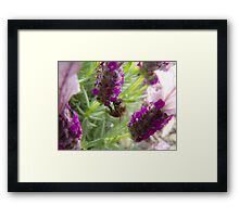 'at work  Framed Print