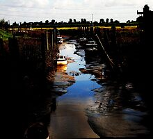Tide all out at sea - surfleet spalding by peckjam23