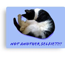 Not Another Selfie??!! - Cat Canvas Print