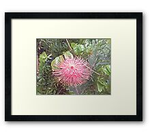high in sky flower Framed Print