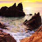 Los Cabos by Bruce Taylor