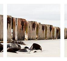 Beach # 1 - Port Fairy by Craig Holloway