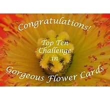 Gorgeous Flower Cards Top Ten Banner Photographic Print