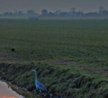 Heron In The Mist II Painting Sticker