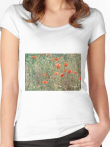 Red Poppies In A Summer Sun Women's Fitted Scoop T-Shirt