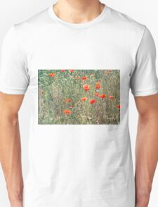 Red Poppies In A Summer Sun Unisex T-Shirt