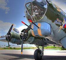 B-17 by Susan Zohn