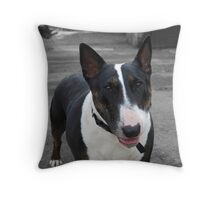 take my picture. Throw Pillow