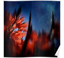 Summer reds Poster