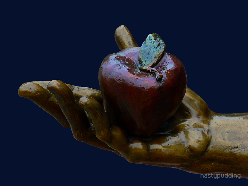 Apple in the Hand by hastypudding