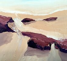 surf and rocks by Claudia Dingle