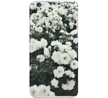 Pure Roses iPhone Case/Skin