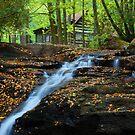 Mill Creek Falls by Jason Vickers