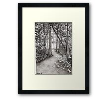 PATH TO THE HUDSON Framed Print