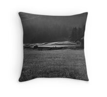 early morning crossing Throw Pillow