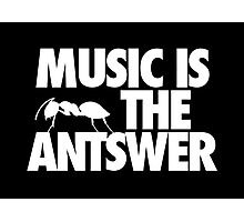 Music is the Antswer Photographic Print