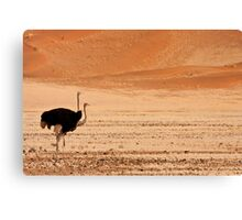 Two headed dune Canvas Print