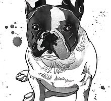 Hand drawn portrait of french bulldog by tomuato
