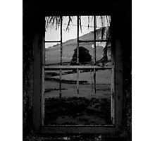 The View Photographic Print