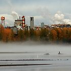 Industrial Plants on the Nechako River by frame-by-frame