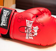 Joe Calzaghe Boxing Glove_9688 by hallphoto