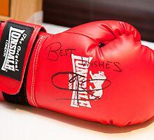 Joe Calzaghe Boxing Glove_9688 by hallphoto