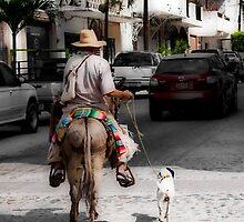 The Dog Walker - Puerto Vallarta by Lynnette Peizer
