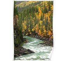 Fraser River Gorge - Rearguard Falls Park Poster