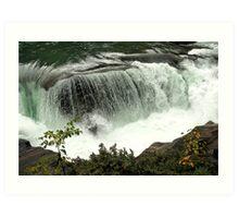 Fraser River - Rearguard Falls Provincial Park Art Print