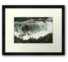 Fraser River - Rearguard Falls Provincial Park Framed Print