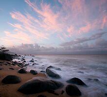 The Cassowary Coast by David Haworth