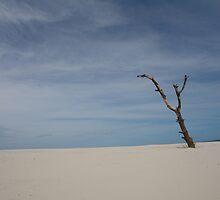 Montevideo - Beach by Gabriela Meirelles