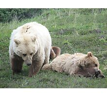 Momma and Bear Cub Photographic Print