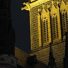 St Patrick's Cathedral - East Melbourne by Ben |  Greg