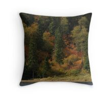 Wolf Camp Lake - near Marathon Ontario Canada on Lake Superior Throw Pillow