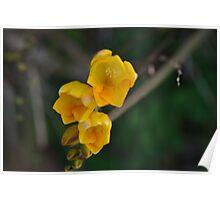 Yellow Submarine Poster