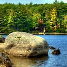 End of Summer at Lake Whittemore 2010 by Monica M. Scanlan