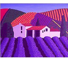Lavender's er...........Mauve Photographic Print