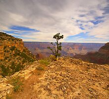 """The Grand Canyon"" by JohnDSmith"