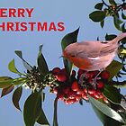 Christmas Reds by Dawn B Davies-McIninch