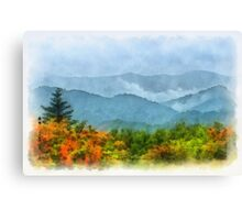 Summer Scene-On Roan Mountain Canvas Print