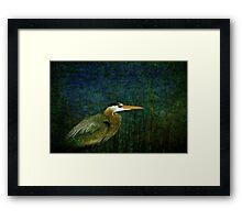 Big Heron Bird Framed Print