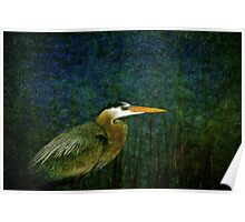 Big Heron Bird Poster