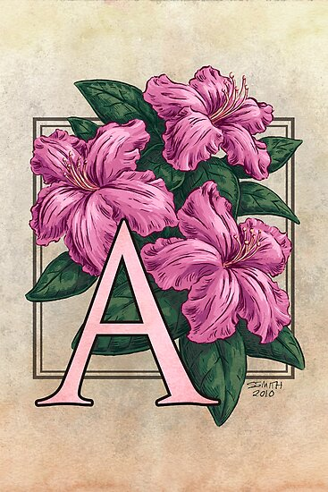 A is for Azalea by Stephanie Smith