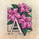 A is for Azalea by Stephanie Smith